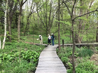 the eloise butler wildflower garden and bird sanctuary and the minnesota school of botanical art are pleased to announce their joint sponsorship of a - Wildflower Garden